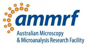 AMMRF Logo