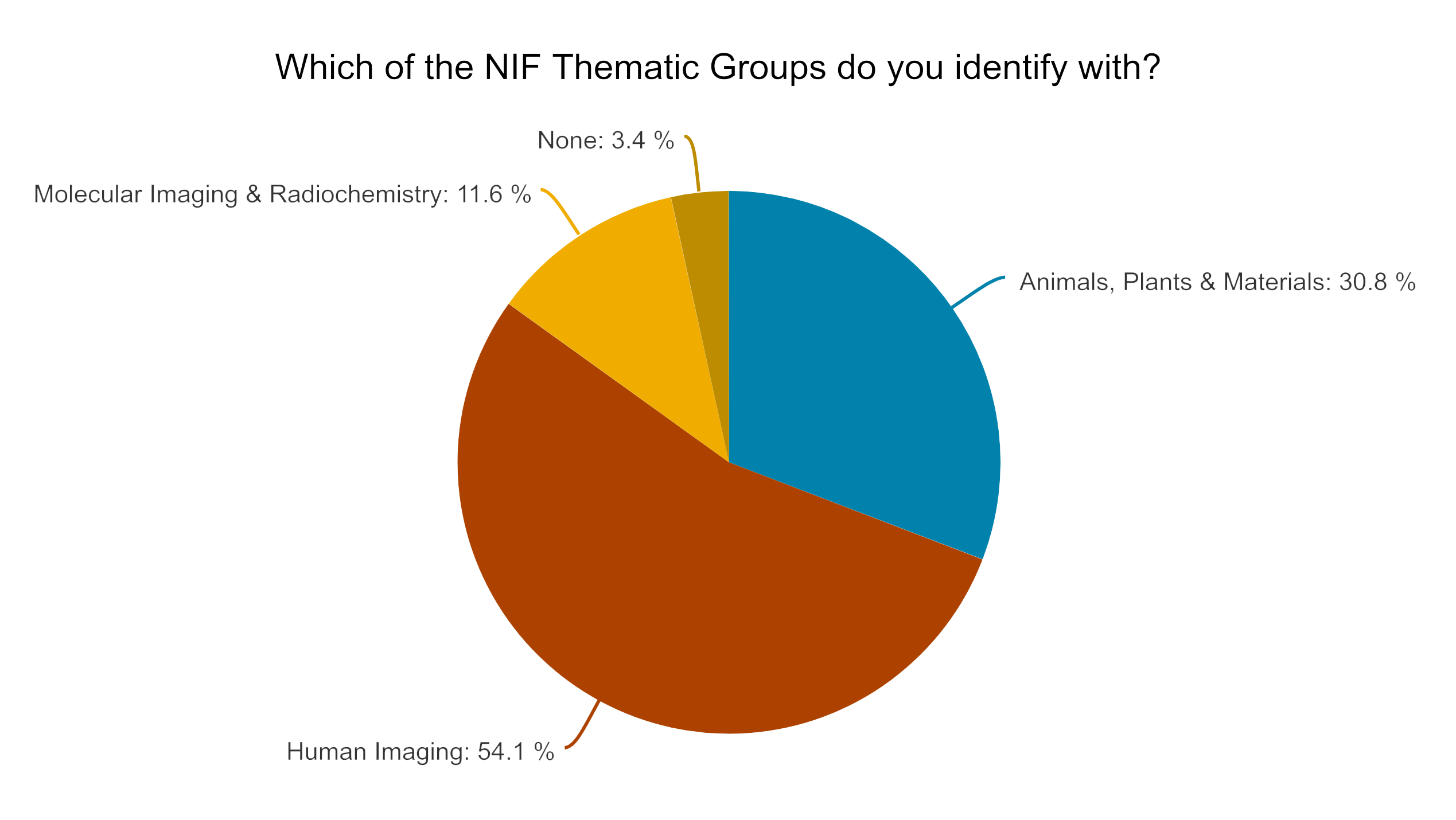 Pie chart showing 54% of users identify with the human imaging theme